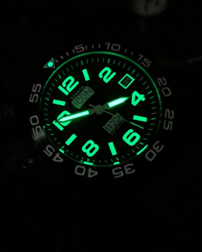 Read The Review Of The Shane Dorian Watch