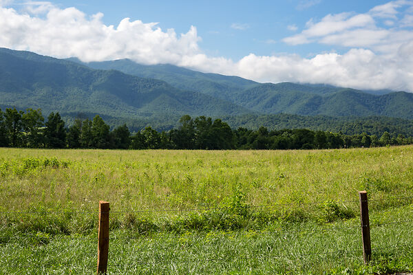 Great Smoky Mountains Picture