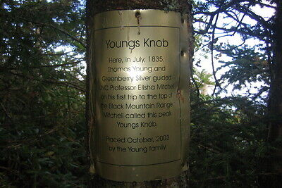 Youngs Knob on the Black Mountain Crest trail
